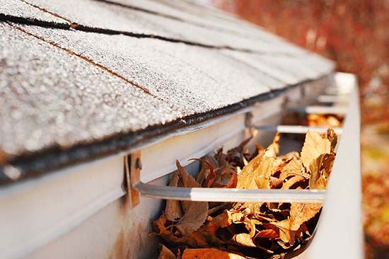gutter filled with dirt and leaves